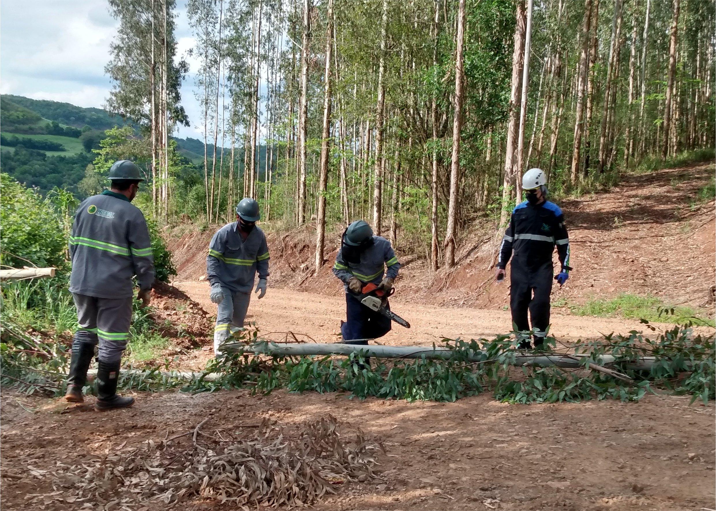 Creral renova treinamento de segurança de suas equipes de campo